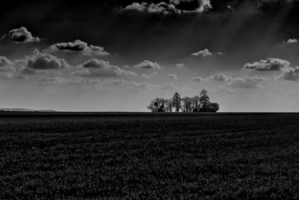 low key photo of Westerberg near Ingelheim in Germany